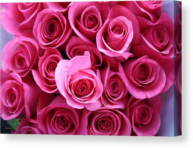 Pink Roses Canvas Print featuring the photograph Grandma Roses by Linda Sannuti