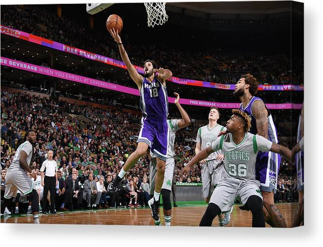 Nba Pro Basketball Canvas Print featuring the photograph Omri Casspi by Brian Babineau