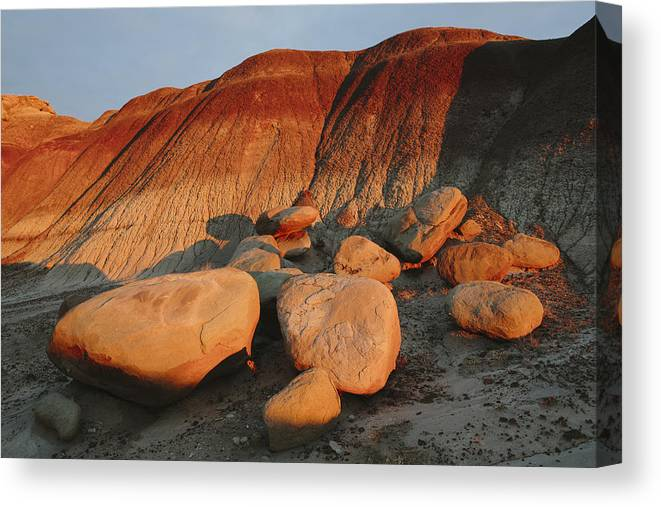 Scenics Canvas Print featuring the photograph Petrified Forest at dusk by Mint Images
