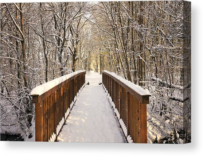 Snow Canvas Print featuring the photograph Towards The Winter Wonderland by Bernd Schunack