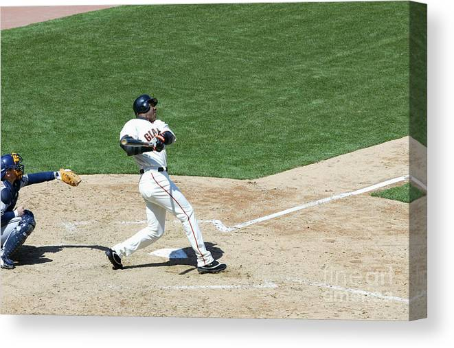 San Francisco Canvas Print featuring the photograph Willie Mays and Barry Bonds by Jed Jacobsohn