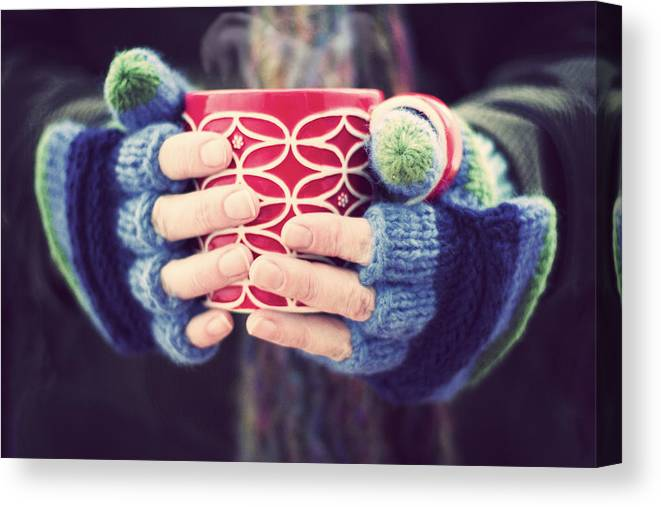 Dublin Canvas Print featuring the photograph Winter warmer by Catherine MacBride