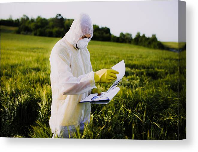 Expertise Canvas Print featuring the photograph Worker For Quality Control In The Field by Mladenbalinovac