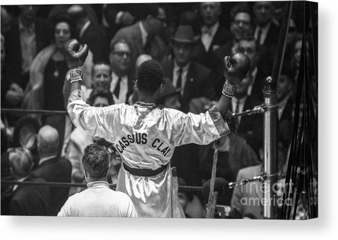 Heavyweight Canvas Print featuring the photograph Cassius Clay Vs Doug Jones by The Stanley Weston Archive