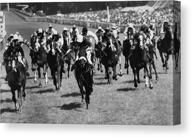Horse Canvas Print featuring the photograph Goodwood Race by Evening Standard