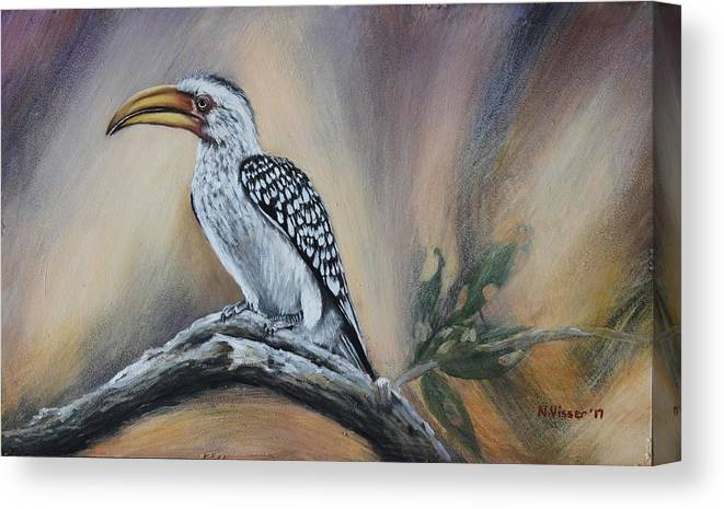 Landscape Canvas Print featuring the painting Yellow-billed Hornbill by Nellie Visser