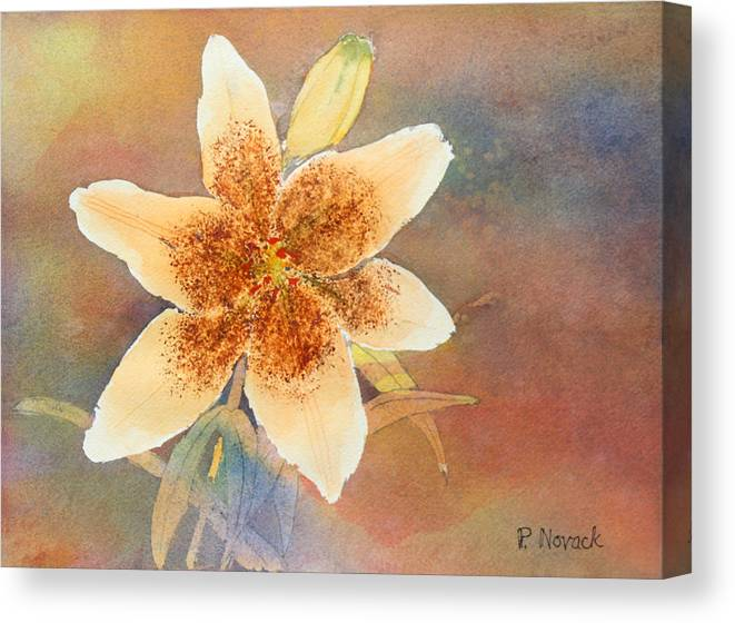 Lily Canvas Print featuring the painting Asiatic Lily by Patricia Novack