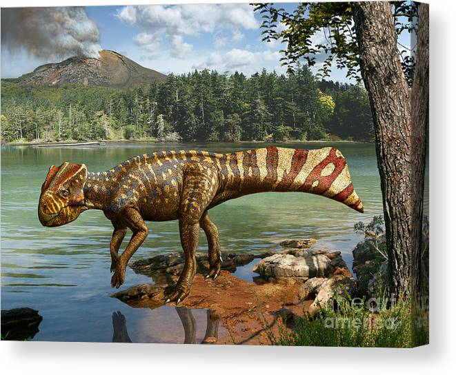 Dinosaur Digital Art Canvas Print featuring the digital art Koreaceratops hwaseongensis by Julius Csotonyi
