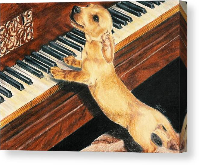 Purebred Dog Canvas Print featuring the drawing Mozart's Apprentice by Barbara Keith