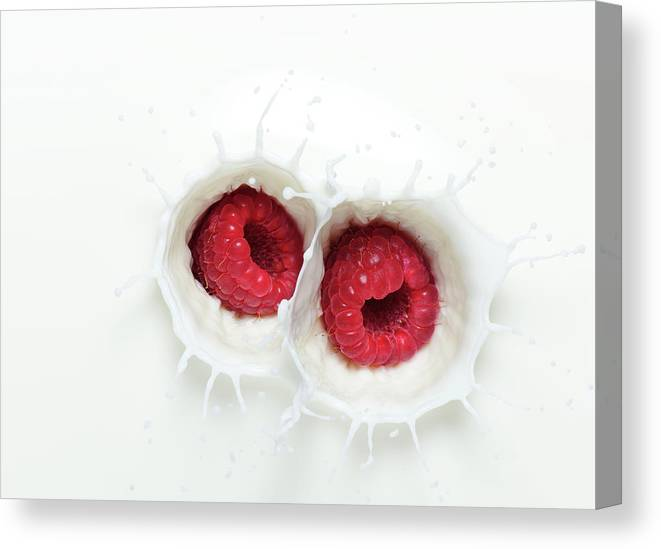 Milk Canvas Print featuring the photograph Raspberry Milk Splash by Chris Stein
