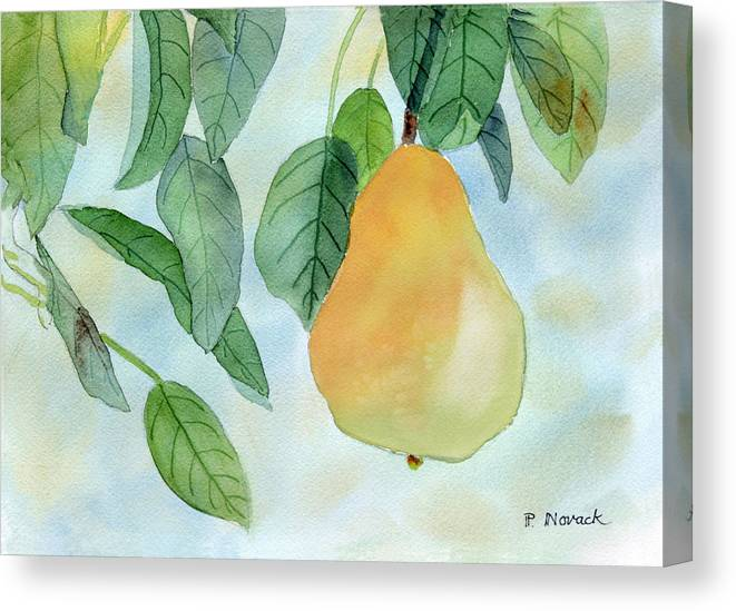 Fruit Canvas Print featuring the painting Ready To Pick by Patricia Novack