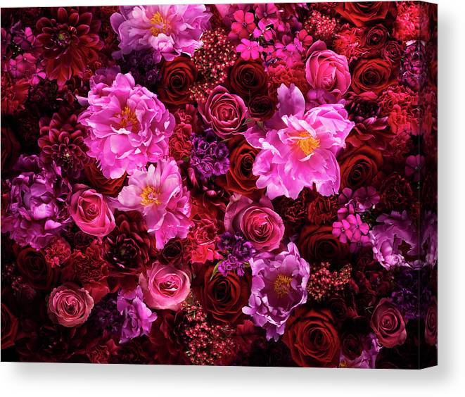 Tranquility Canvas Print featuring the photograph Red And Pink Cut Flowers, Close Up by Jonathan Knowles