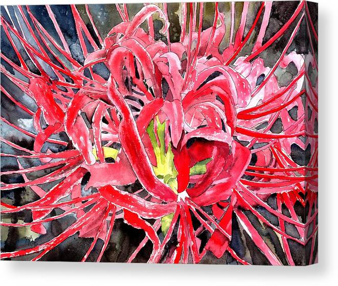 Watercolor Canvas Print featuring the painting Red Spider Lily Flower Painting by Derek Mccrea