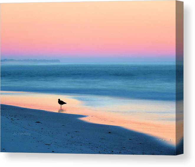 Beach Canvas Print featuring the photograph The Day Begins by JC Findley