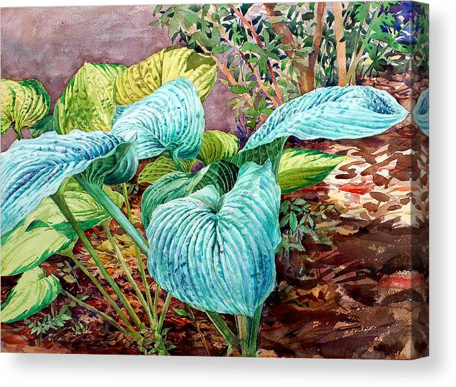 Watercolor Canvas Print featuring the painting Hosta by Peter Sit