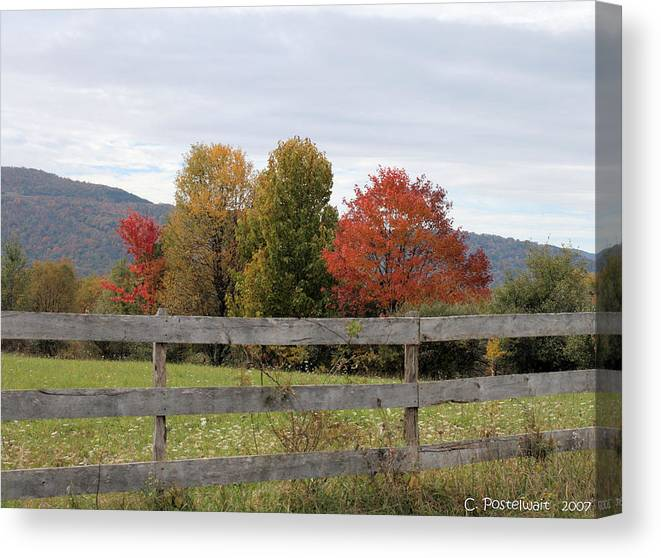 Trees Canvas Print featuring the photograph Autumn on Point Mountain by Carolyn Postelwait