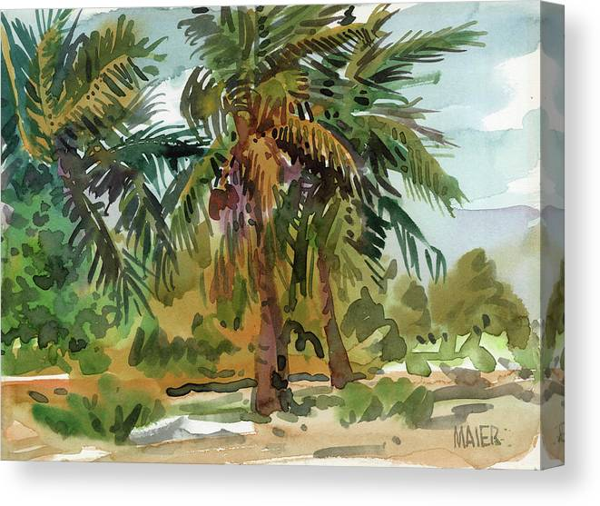 Key West Canvas Print featuring the painting Palms in Key West by Donald Maier
