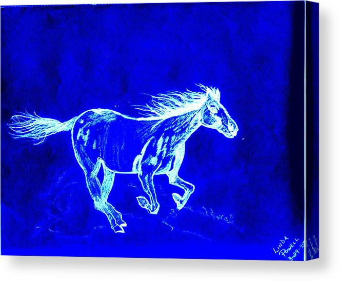 Digital Print Blue Horse Pencil Drawing Original Canvas Print featuring the digital art Blue Horse by Linda Powell
