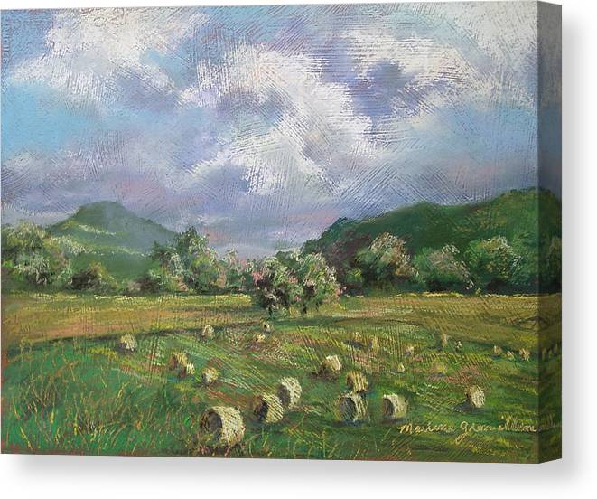 Pastel Canvas Print featuring the painting Early Summer Cutting by Marlene Gremillion