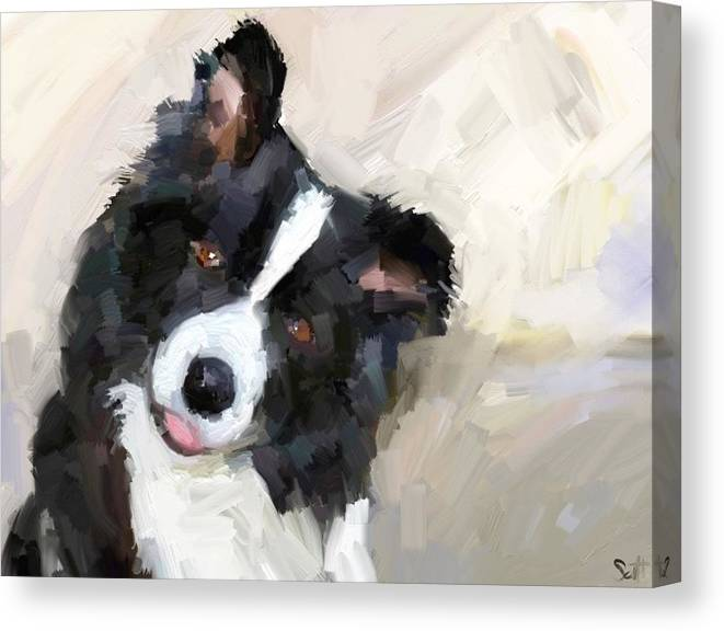 Border Collie Dog Sheepdog Canvas Print featuring the digital art Got any sheep? by Scott Waters