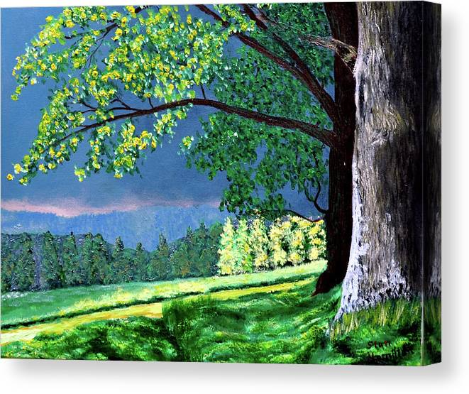 Thunder Showers Canvas Print featuring the painting Landscape Light by Stan Hamilton