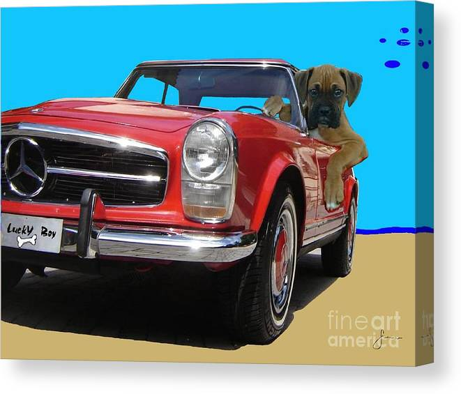 Pets Portraits. Pets Art Canvas Print featuring the painting Lucky Boy by Sinisa Saratlic