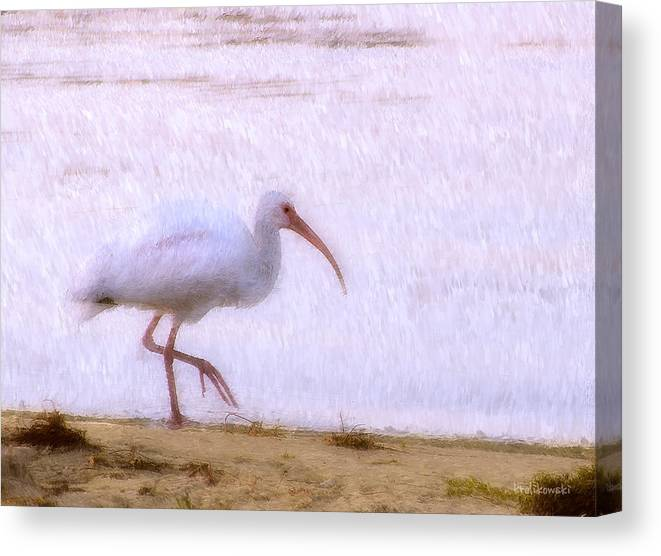 Bird Canvas Print featuring the painting Morning Stroll by Kenneth Krolikowski
