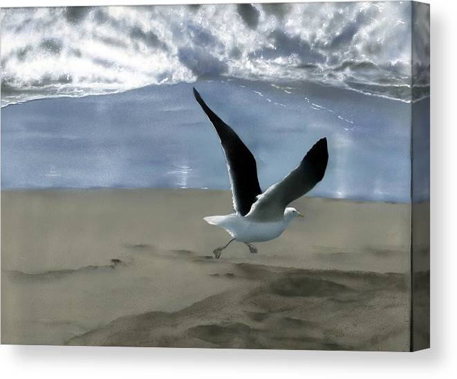 Gull Canvas Print featuring the painting Running Gull by Charles Parks