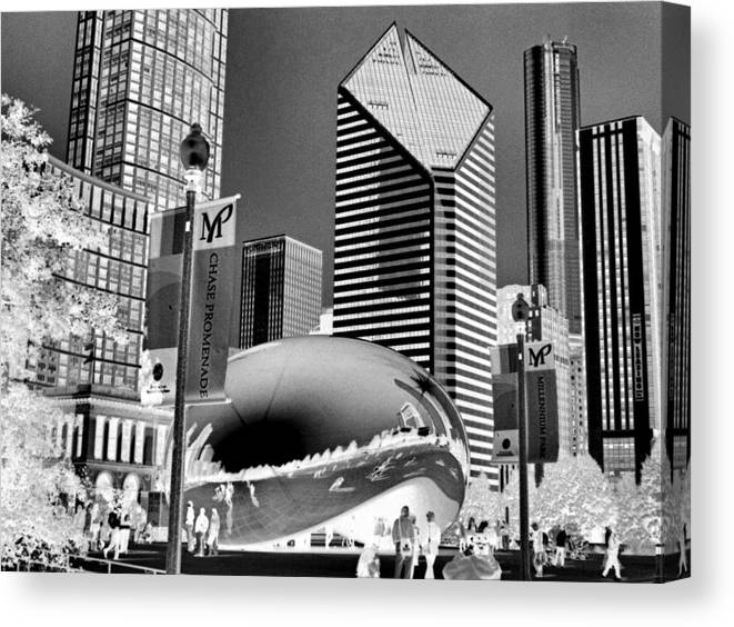 The Bean Canvas Print featuring the photograph The Bean - 2 by Ely Arsha