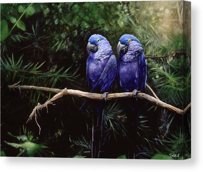 Macaw Art Canvas Print featuring the painting Twins by Steve Goad