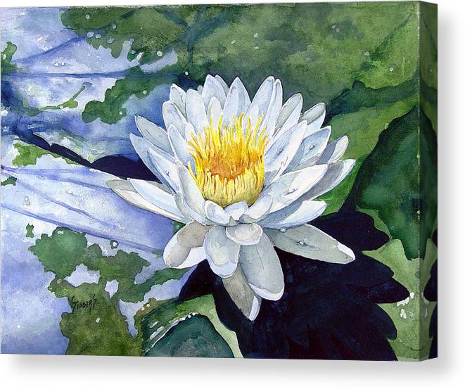 Flower Canvas Print featuring the painting Water Lily by Sam Sidders