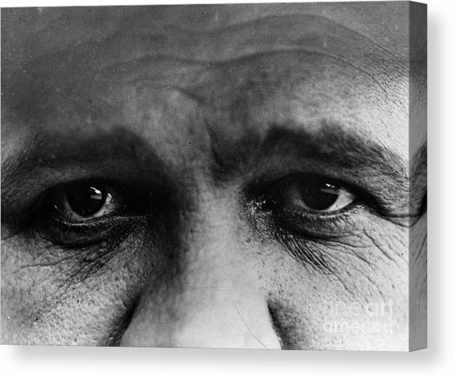 People Canvas Print featuring the photograph Babe Ruth Eyes by Transcendental Graphics