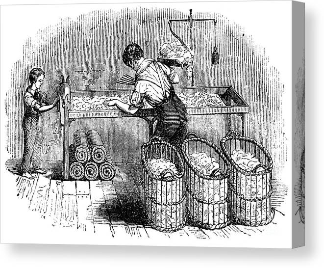 Working Canvas Print featuring the drawing Cotton Manufacture, C1845 by Print Collector