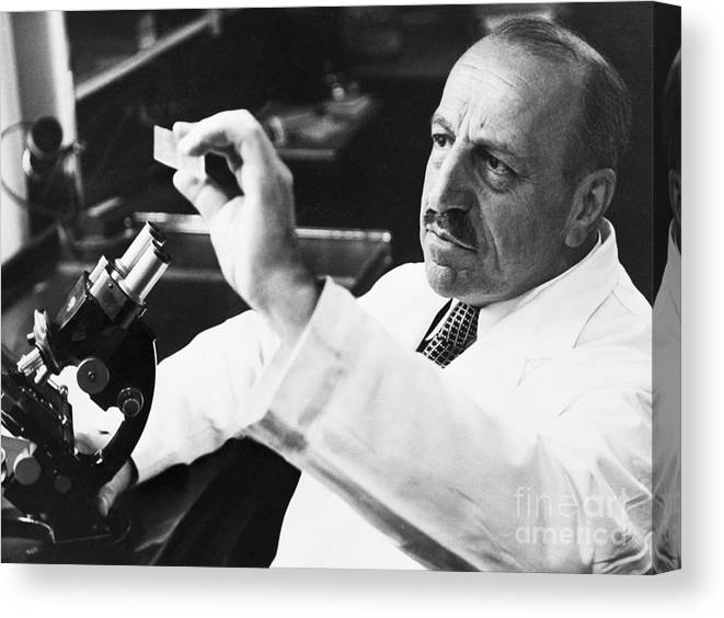 Microscope Canvas Print featuring the photograph George Papanicolaou Examining A Slide by Bettmann