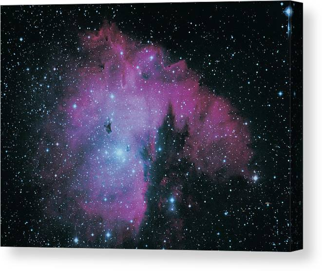 Purple Canvas Print featuring the photograph Nebula by Digital Vision.