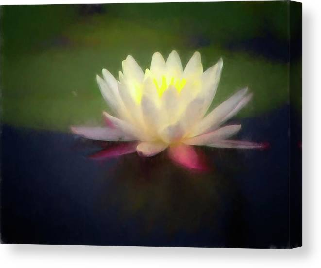 Flower Canvas Print featuring the digital art Water Lily 1 by Steve DaPonte