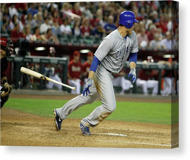 Animal Canvas Print featuring the photograph Anthony Rizzo by Ralph Freso