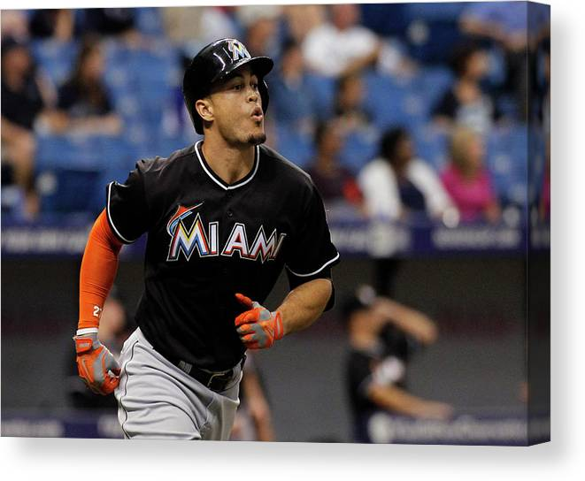American League Baseball Canvas Print featuring the photograph Giancarlo Stanton by Brian Blanco