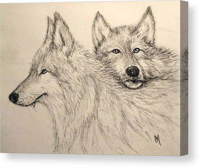 Wolves Canvas Print featuring the drawing Timberwolf by Pete Maier
