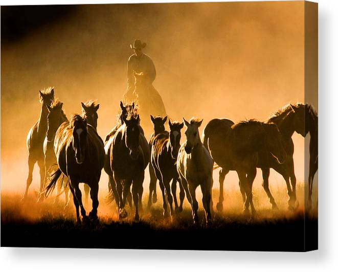 Horses Wrangler Ranching Canvas Print featuring the photograph Driving the Herd by Lourie Zipf