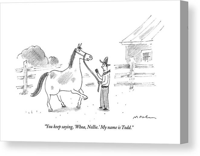 Horses Canvas Print featuring the drawing A Horse Speaks To A Cowboy Trying To Calm by Michael Maslin