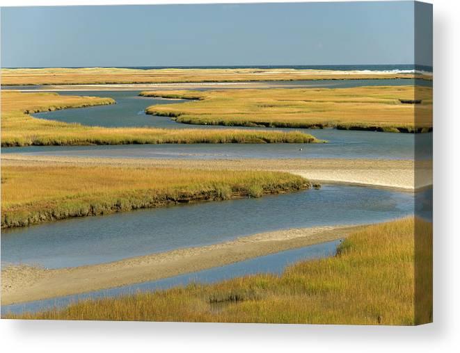 Grass Canvas Print featuring the photograph Cape Cod Wetlands by Frankvandenbergh