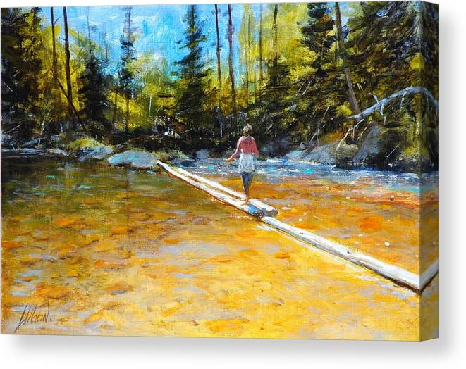 Mountain Stream Canvas Print featuring the painting Easy does it by Greg Clibon