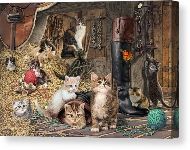 Steve Read Canvas Print featuring the photograph Kitten Capers by MGL Meiklejohn Graphics Licensing
