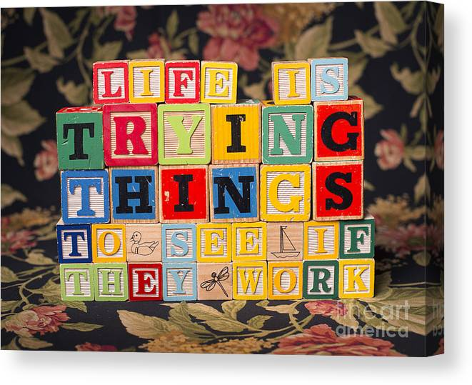 Life Is Trying Things To See If They Work Canvas Print featuring the photograph Life Is Trying Things To See If They Work by Art Whitton