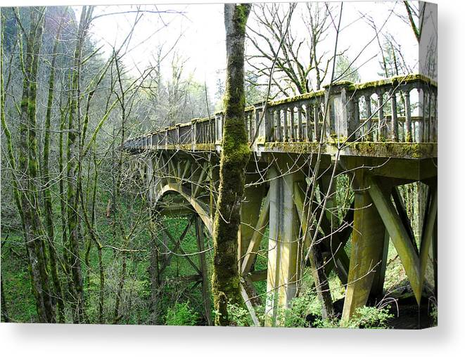 Bridge Canvas Print featuring the photograph Moss-covered Bridge and Trees by Keith Gondron