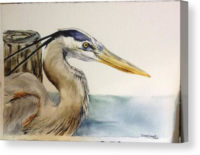 Watercolor Canvas Print featuring the painting Mr herrin by Diane Ziemski