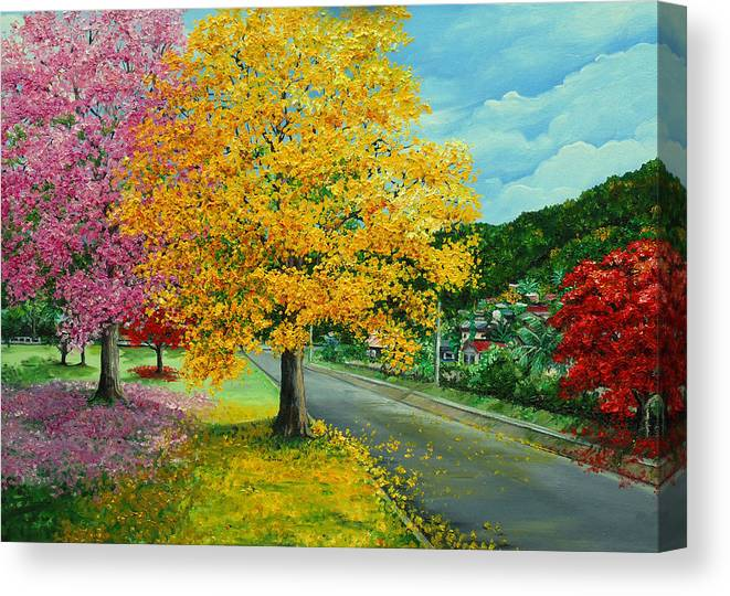 Poui Trees Canvas Print featuring the painting Poui In Diego by Karin Dawn Kelshall- Best