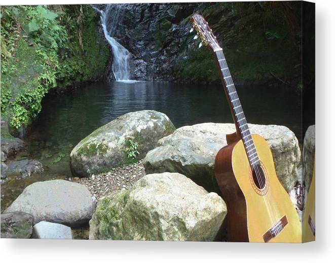 Guitar Canvas Print featuring the digital art Rain Forest Guitar by Tony Rodriguez