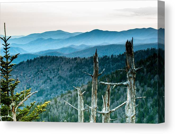 Trees Canvas Print featuring the photograph Smoky Mountain Overlook by Paul Johnson